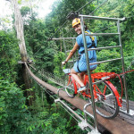 canopy-cycling-adventure