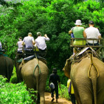 thailand-activities-740a