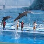 water-activities-pattaya-honeymoon-thailand